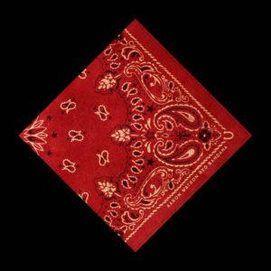 Aaron Watson Red Bandana Album Review